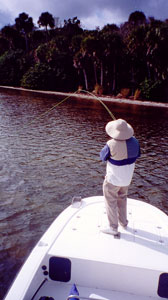 Flyfishing Charters in Mosquito Lagoon